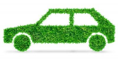 Conducerea ecologică